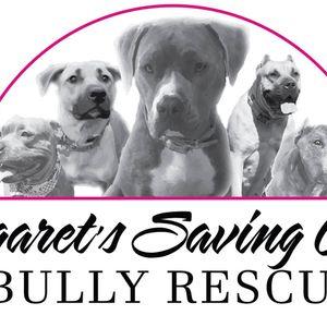 Margarets Saving Grace Bully Rescue Logo