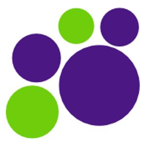 Kibblestone District Scout Council Logo