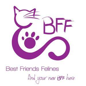 Best Friends Felines Inc Logo