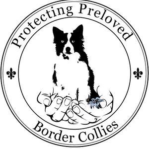 Protecting Preloved Border Collies Logo