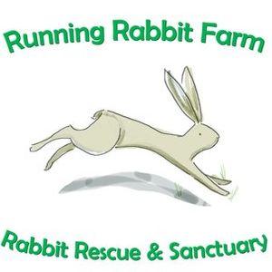Running Rabbit Farm Rabbit Rescue Sanctuary Logo