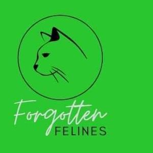 Forgotten felines cat rescue Logo
