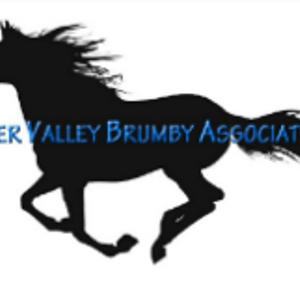 Hunter Valley Brumby Association Logo