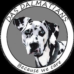 DAS Dalmatians Logo