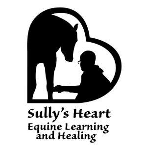 sullys heart inc Logo