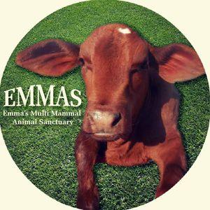 EMMAS - Emmas Multi Mammal Animal Sanctuary Logo