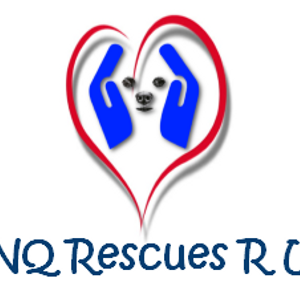 FNQ Rescues R Us Logo