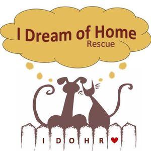 I Dream of Home Rescue Logo