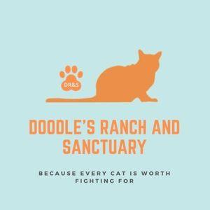 Doodles Ranch and Sanctuary Logo