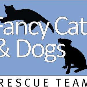 Fancy Cats & Dogs Rescue Team Logo