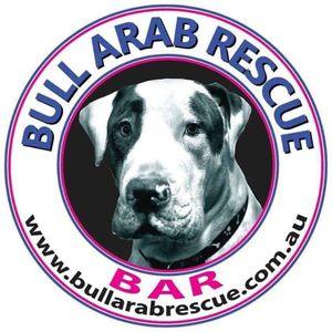 Bull Arab Rescue Logo