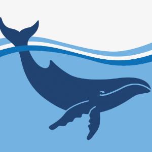 Australian Marine Conservation Society Inc Logo