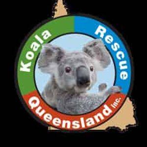 Koala Rescue Queensland Incorporated Logo