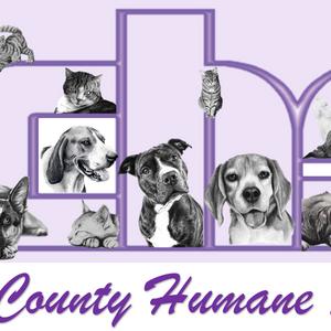 Lewis County Humane Society Logo
