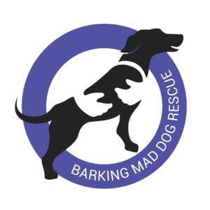 Barking Mad Dog Rescue Logo