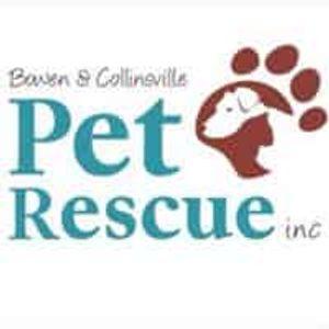 Bowen Collinsville Pet Rescue Inc Logo