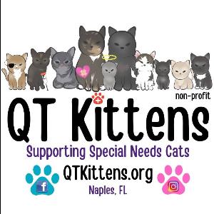 QTKittens Logo
