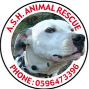Ash Animal Rescue Logo