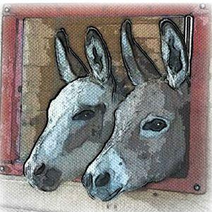 Little Longears Miniature Donkey Rescue Logo