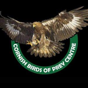 Cornish Birds of Prey CIC Logo