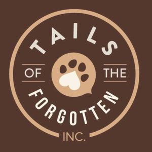 Tails of the forgotten INC Logo