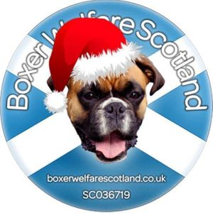 CDH UK Boxer Welfare Scotland Logo