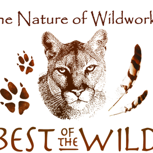 The Nature of Wildworks Logo