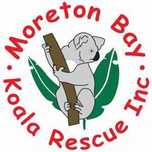 Moreton Bay Koala Rescue Logo