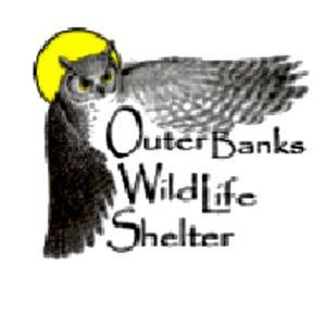 Outer banks Wildlife Shelter Logo