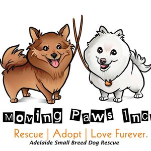 Moving Paws Incorporated Logo