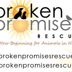 Broken promises rescue Logo