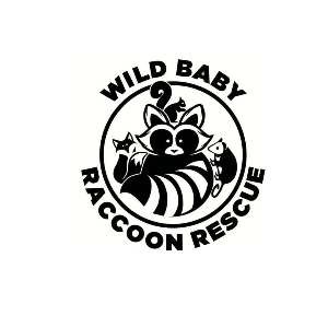Wild Baby Raccoon Rescue Logo