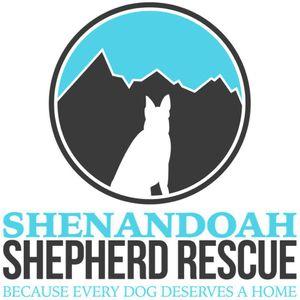 Shenandoah Shepherd Rescue Logo