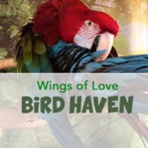 Wings of Love Bird Haven Logo