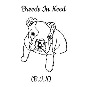 Breeds in Need Rescue UK Logo