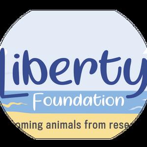 Liberty Foundation Australia Logo